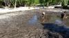 Nasinu Hot Springs, Efate Island, Vanuatu